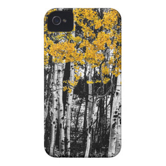 Aspen Touch of Orange iPhone 4 Covers