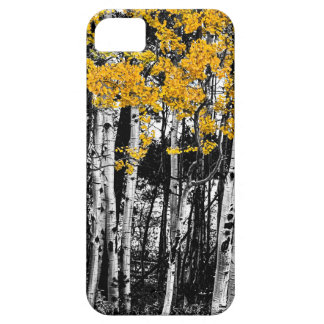 Aspen Touch of Orange iPhone 5 Cover