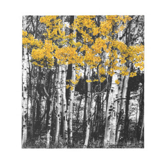 Aspen Touch of Orange Notepad