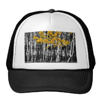 Aspen Touch of Orange Trucker Hat