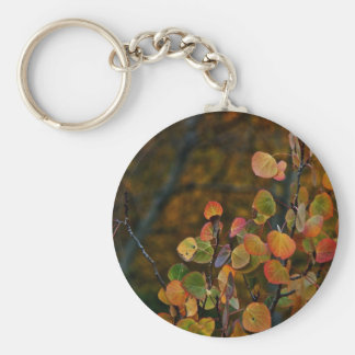 ASPEN TREE BRANCHES WITH FALL COLORED LEAVES KEYCHAIN