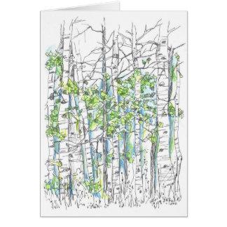 Aspen Tree Grove Ink Drawing Blank Card