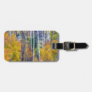 Aspen Tree Magic Cottonwood Pass Luggage Tag