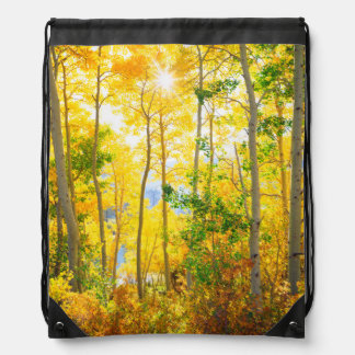 Aspen Trees In Fall | Sierra Nevada Mountains, CA Drawstring Bag
