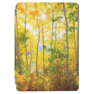 Aspen Trees In Fall | Sierra Nevada Mountains, CA iPad Air Cover