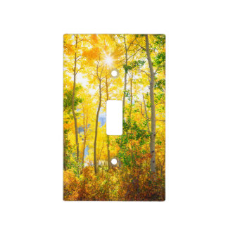 Aspen Trees In Fall | Sierra Nevada Mountains, CA Light Switch Cover