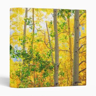 Aspen Trees In Fall | Sierra Nevada Mountains, CA Vinyl Binders