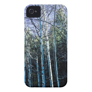 Aspen trees in the fall iPhone 4 cover