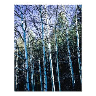 Aspen trees in the fall letterhead