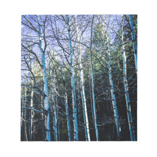 Aspen trees in the fall notepad