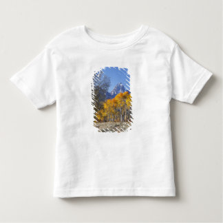 Aspen trees with the Teton mountain range 3 Toddler T-shirt