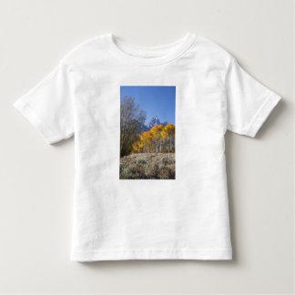 Aspen trees with the Teton mountain range 3 T-shirt