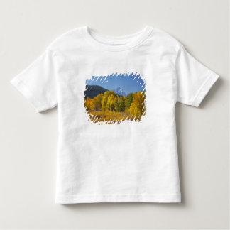Aspen trees with the Teton mountain range 7 Toddler T-shirt