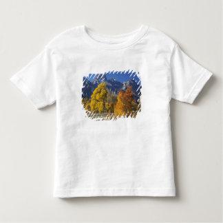Aspen trees with the Teton mountain range Toddler T-shirt