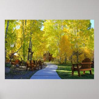 """Aspen Walkway"" Fall Colors, Hope Valley CA. Poster"