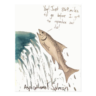 Aspirational Salmon Postcard