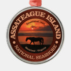 Assateague Island National Seashore Metal Ornament