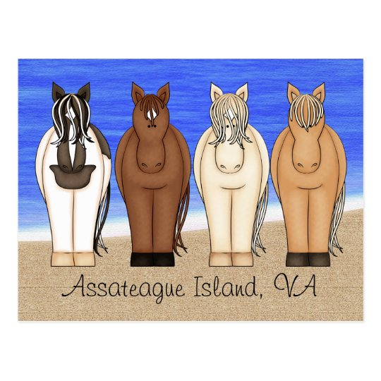 Assateague Island VA Chincoteague Ponies Postcard
