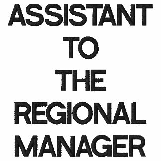 ASSISTANT TOTHE REGIONAL MANAGER EMBROIDERED POLO SHIRTS