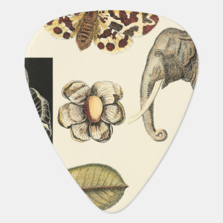Assorted Animals Painted on Cream Background Guitar Pick