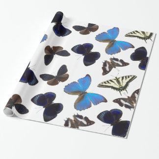 Assorted butterflies