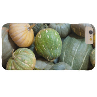 Assorted pumpkins barely there iPhone 6 plus case