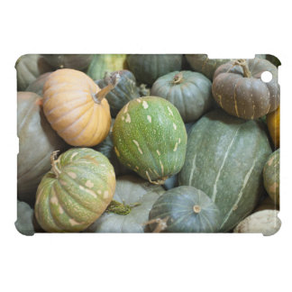 Assorted pumpkins iPad mini case