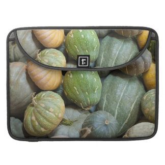 Assorted pumpkins MacBook pro sleeves