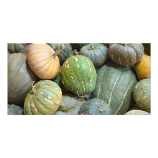 Assorted pumpkins personalized photo card