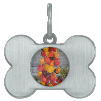 Assortment of colorful chilli peppers pet ID tag