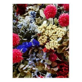 Assortment Of Dried Flowers Postcard