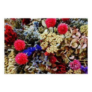 Assortment Of Dried Flowers Poster