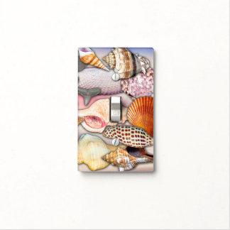 Assortment of Sea Shells | Light Switch Cover