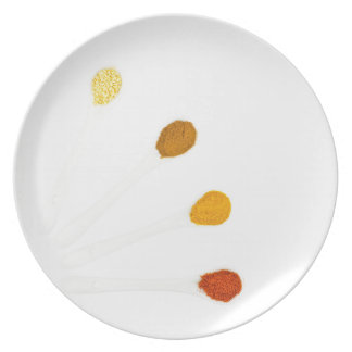 Assortment seasoning spices on porcelain spoons plate