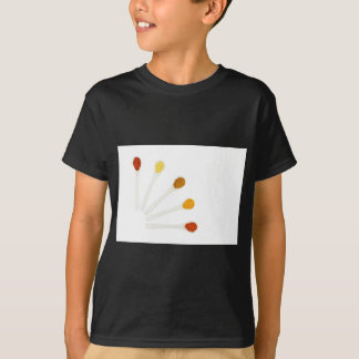 Assortment seasoning spices on porcelain spoons T-Shirt