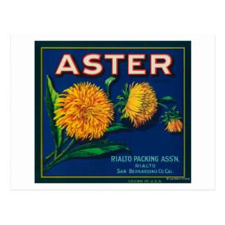Aster Brand Citrus Crate Label Postcard