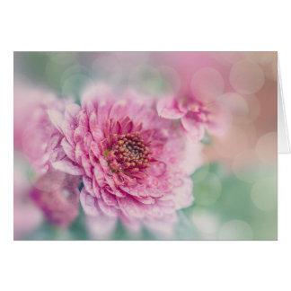 Aster flower card
