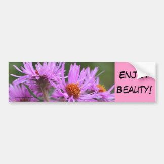 Aster Flowers Beauty Inspirational Bumper Sticker