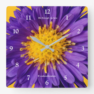 Aster Kickin' Lilac Blue Michaelmas Daisies Square Wall Clock