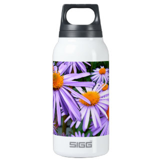Aster Tongolensis Wartburg Star Purple Flower Insulated Water Bottle