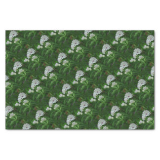 Astrantia Flowers Tissue Paper