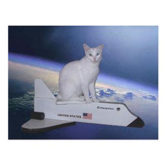 Astronaut Cat (Spirit) on Space Shuttle Postcard