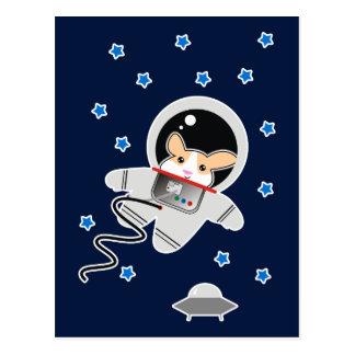 Astronaut Hamster Postcard