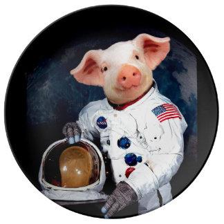 Astronaut pig - space astronaut plate