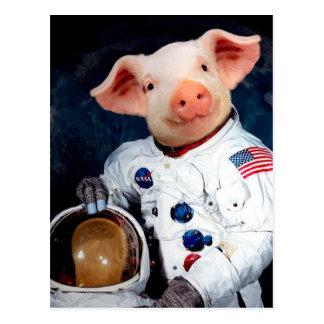 Astronaut pig - space astronaut postcard