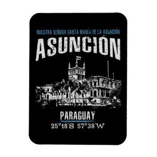 Asunción Magnet