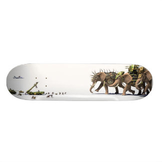 Asymmetry skateboard