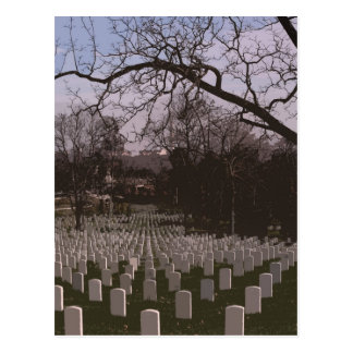 At Arlington National Cemetary Postcard