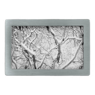 at home in snow belt buckles