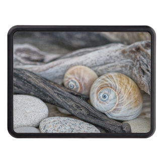 At the beach trailer hitch cover